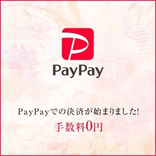 paypayのキャッシュレス決済がスタートしました!!